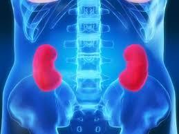 Kidney Disease Diets