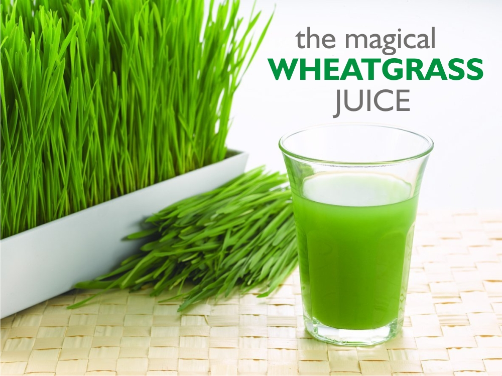 The Magical Wheatgrass Juice!
