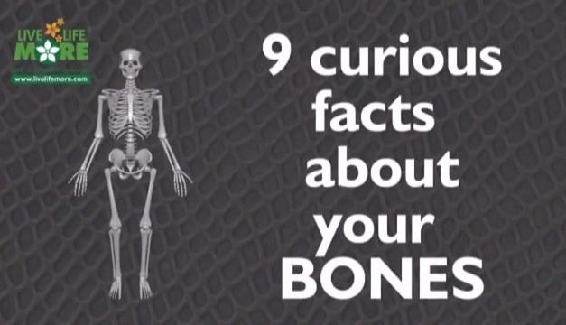 9 Curious & Interesting Bones Facts of Our Human Body