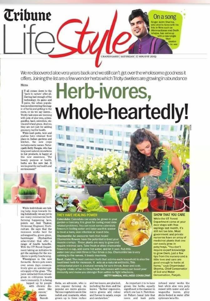 lifestyle herb ivores tribune diet
